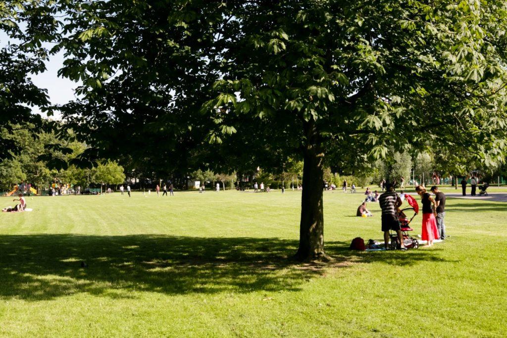 Le parc du Tronchet